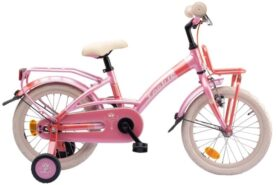 "LOEKIE PRINSES 16"" MS"