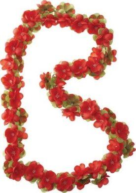 Basil bloemslinger rood